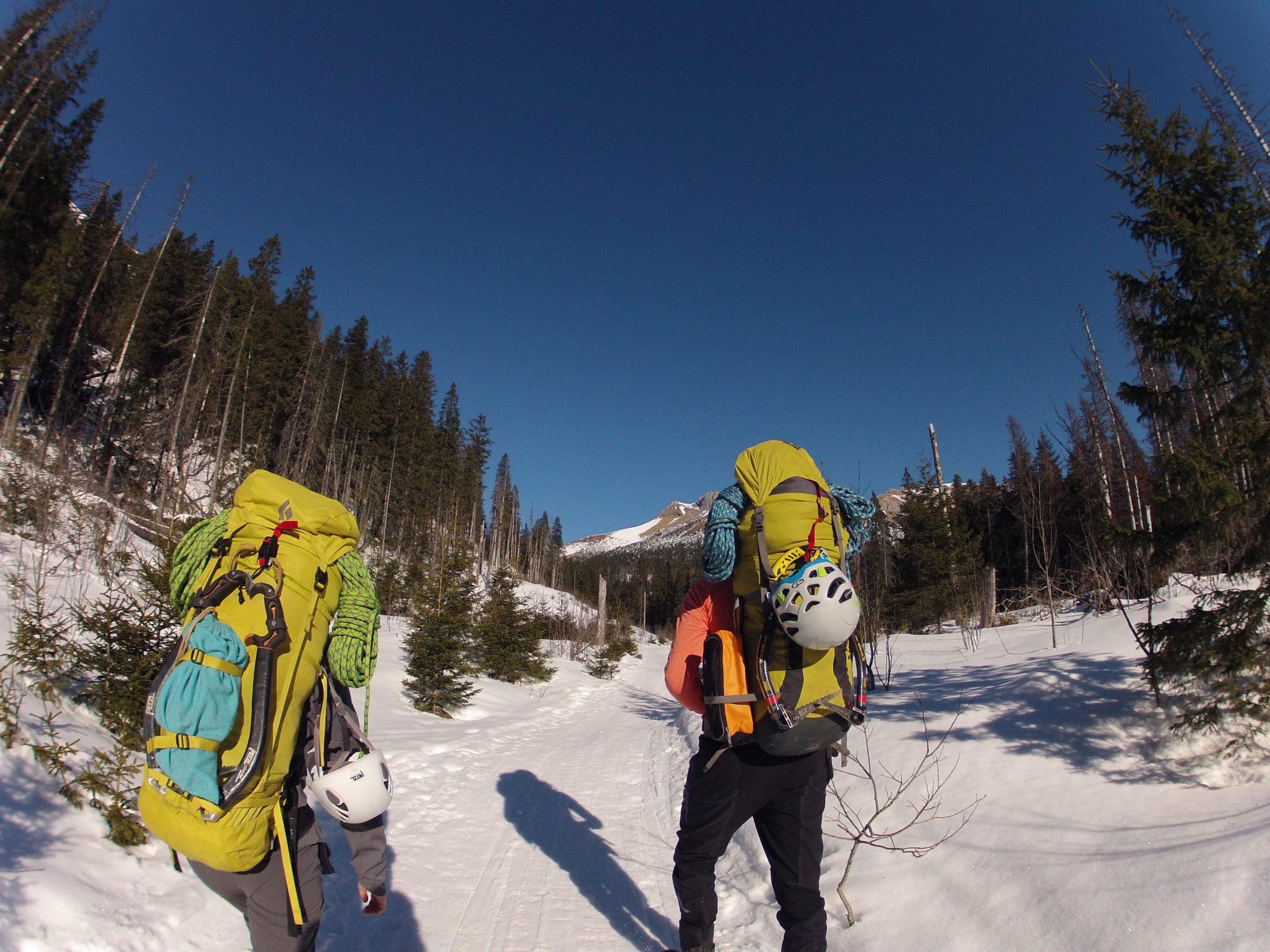 kelione i kalnus